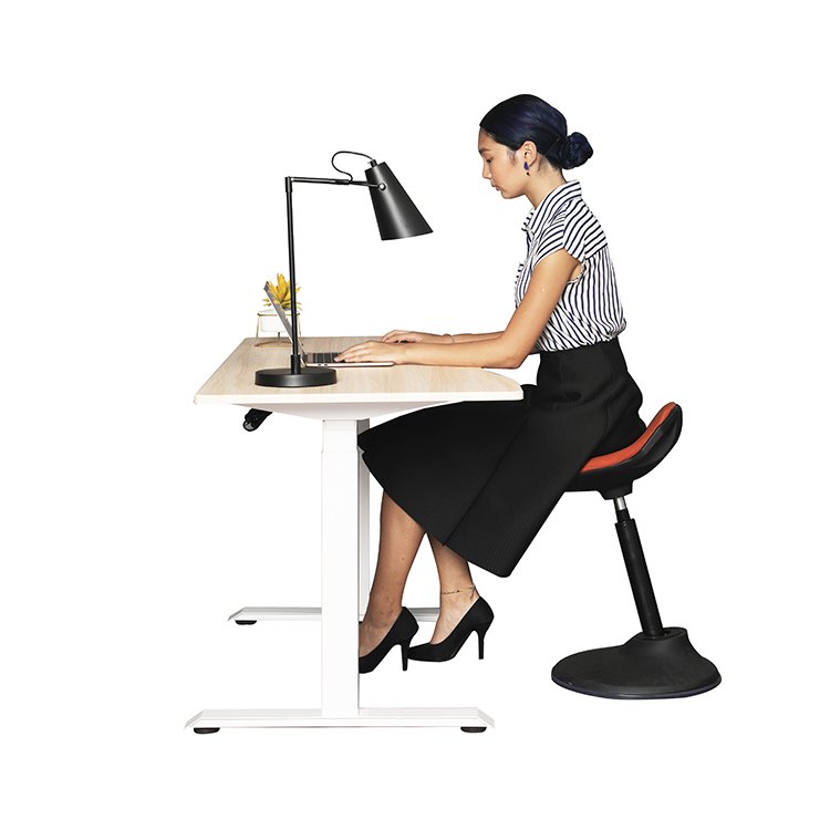 Single Motor Folding Hiden Motor Height Adjustable Standing Desk With Desktop